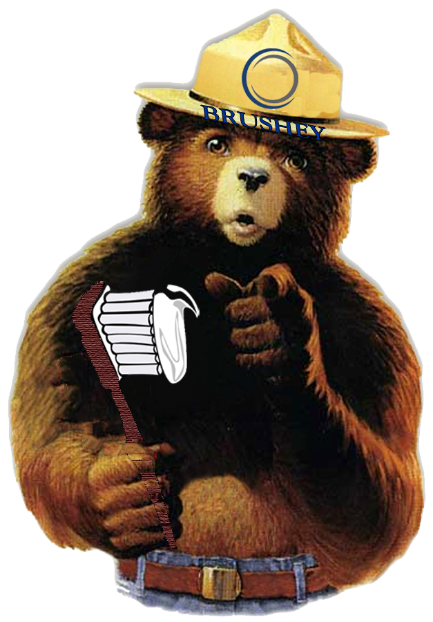 brushey-the-bear